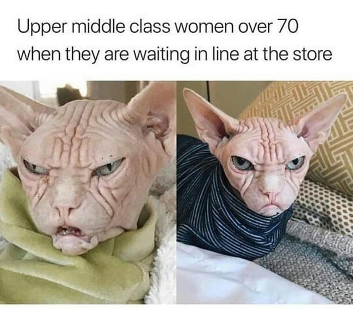 upper middle class women over 70 when they are waiting in line at the store