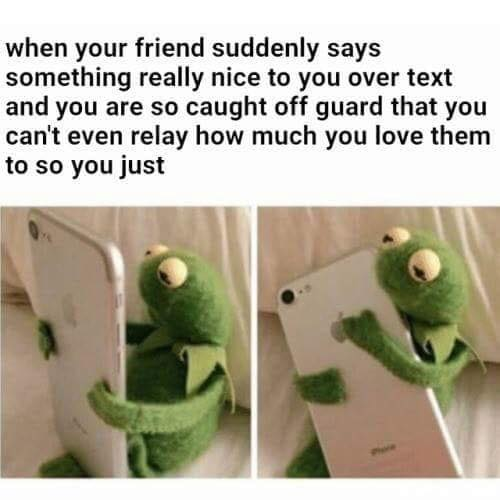 when your friend suddenly says something really nice to you over text and you are so caught off guard that you can't even relay how much you love them to so you just, hug your phone, kermit