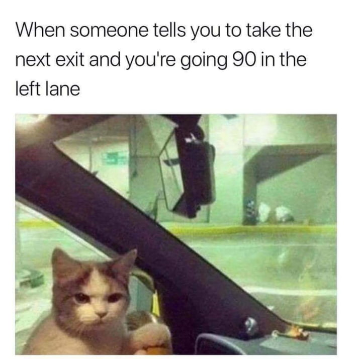 when someone tells you to take the next exist and you're going 90 in the left lane, cat, meme