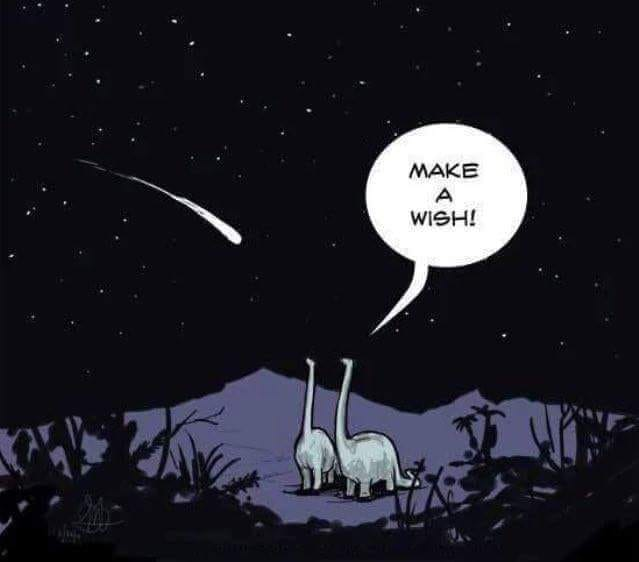 make a wish, two dinosaurs looking at a shooting star that is probably a death comet