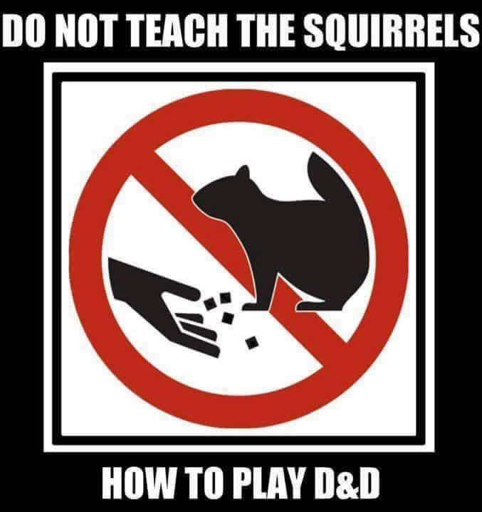 do not teach the squirrels how to play d&d