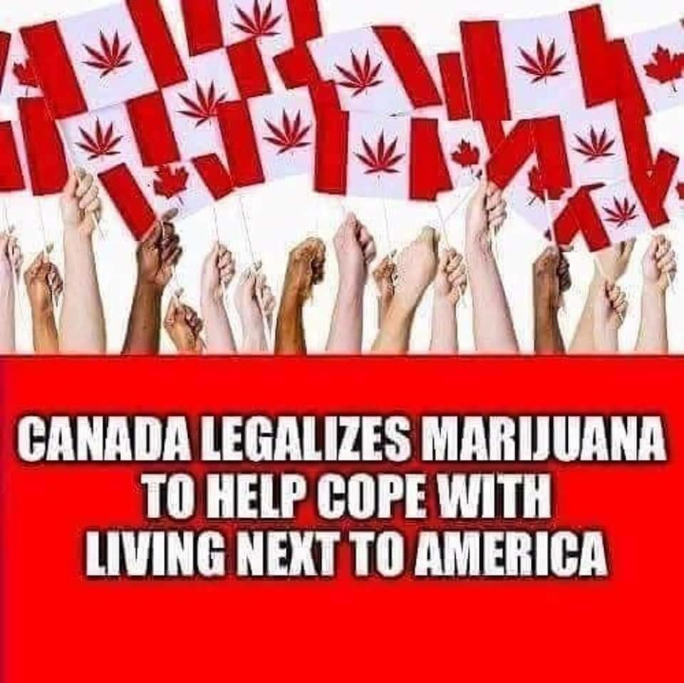 canada legalizes marijuana to help cope with living next to america