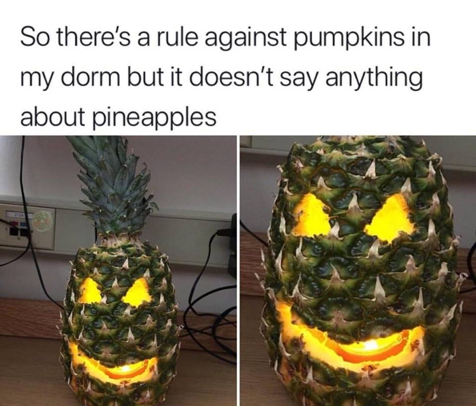 so there's a rule against pumpkins in my dowm but it doesn't say anything about pineapples