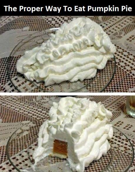 the proper way to eat pumpkin pie, only whipped cream