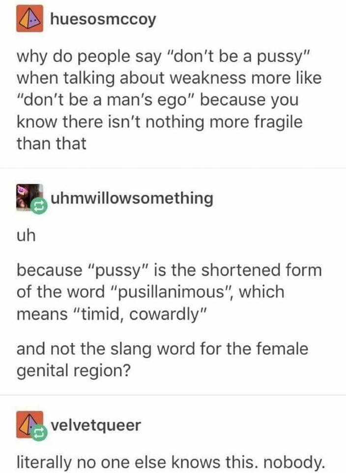 pussy is the shortened form of the word pusillanimous, which means timid, cowardly, and not the slang for the female genital region