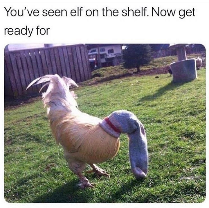 you've seen elf on the shelf, now get ready for cock in the sock