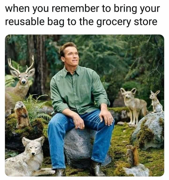 when you remember to bring your reusable bag to the grocery store, arnold schwarzenegger in the woods with forest animals
