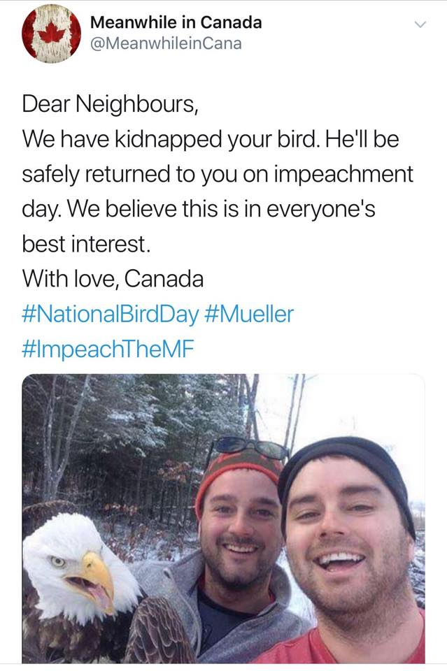 dear neighbors, we have kidnapped your bird, he'll be safely returned to you on impeachment day, we believe this is in everyone's best interest, with love, canada, #mueller, #nationalbirdday