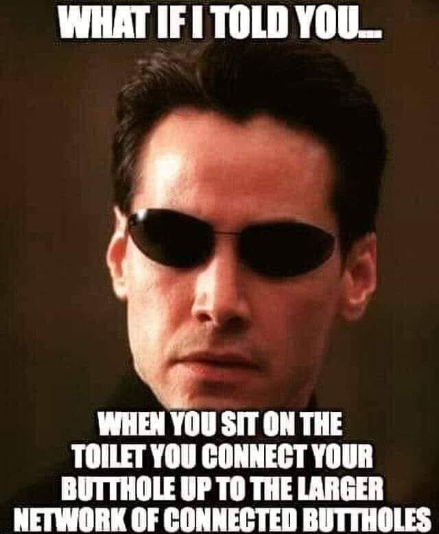 what if i told you, when you sit on the toilet you connect your butthole up to the larger network of connected buttholes