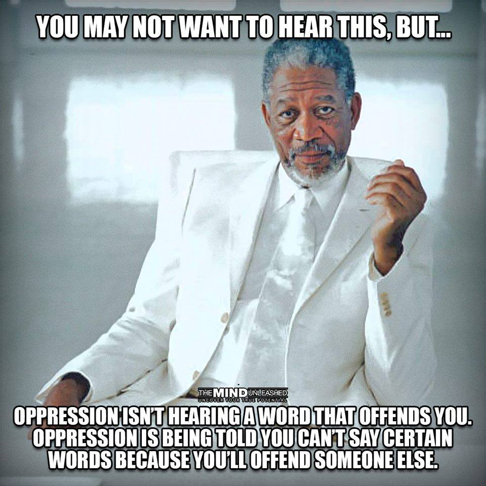 oppression isn't hearing a word that offends you, oppression is being told you can't say certain words because you'll offend someone else