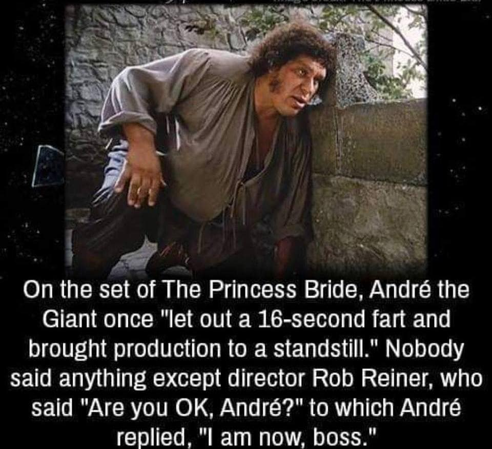 on the set of the princess bridge, andre the giant once let out a 16 second fart and brought production to a standstill, nobody said anything except director rob reiner, who said, are you okay andre?, i am now boss