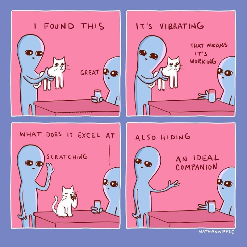 i found this, great, it's vibrating, that means it's working, what does it excel at?, scratching, also hiding, an ideal companion, nathanwpyle