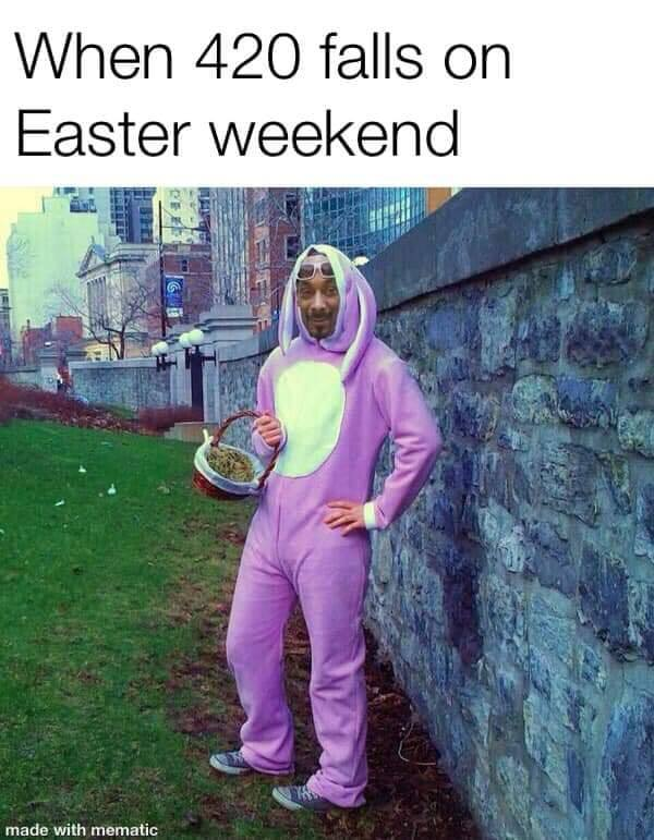 when 420 falls on easter weekend, snow dogg in a bunny costume