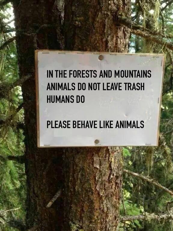 in the forest and mountains, animals do not leave trash, humans do, please behave like animals