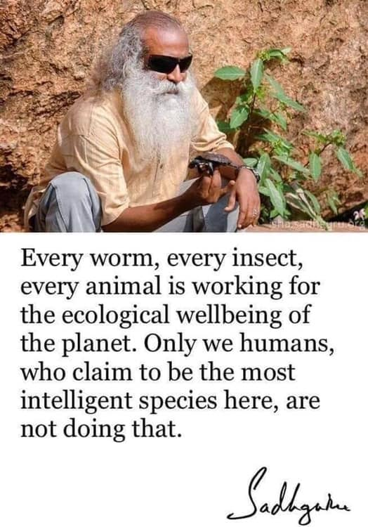 every worm, every insect, every animal is working for the ecological wellbeing of the planet, only we humans who claim to be the most intelligent species here are not doing that