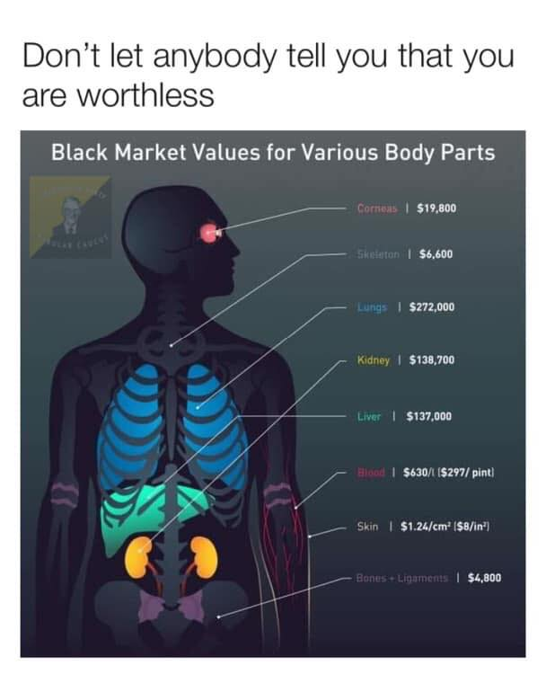 don't let anyone tell you you are worthless, average cost of various body parts