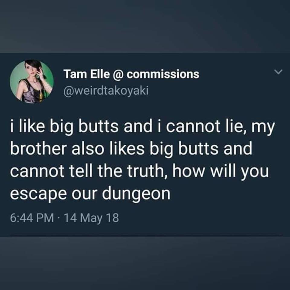 i like big butts and i cannot lie, my brother also likes big butts and cannot tell the truth, how will you escape our dungeon