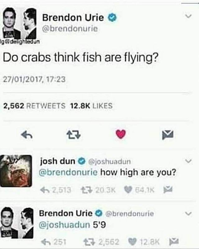 do crabs think fish are flying, how high are you, 5'9