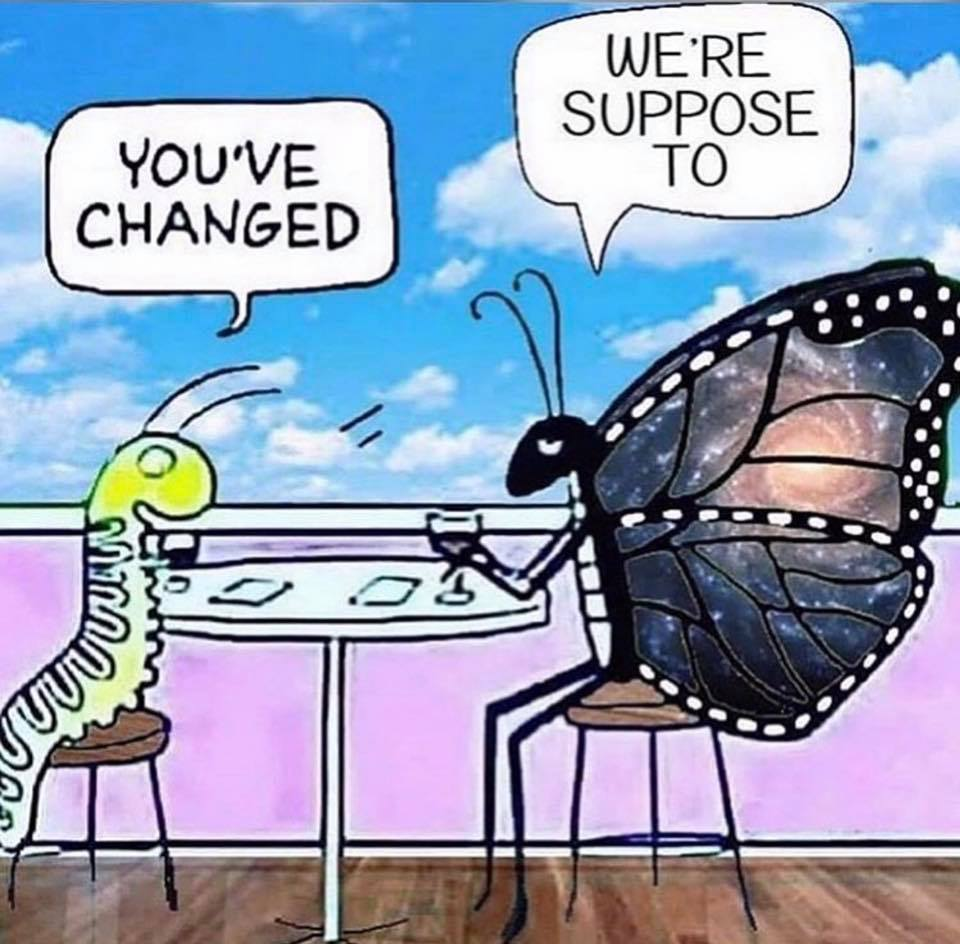 you've changed, we're suppose to, caterpillar and butterfly