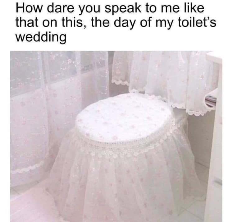 how dare you speak to me like that on this, the day of my toilet's wedding