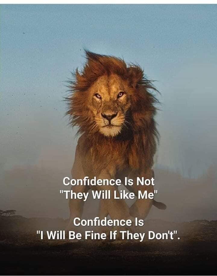 confidence is not, will they like me, it is, i will be fine if they don't