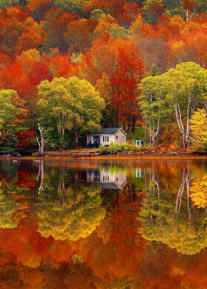 mirror image of a cottage lake house in the fall