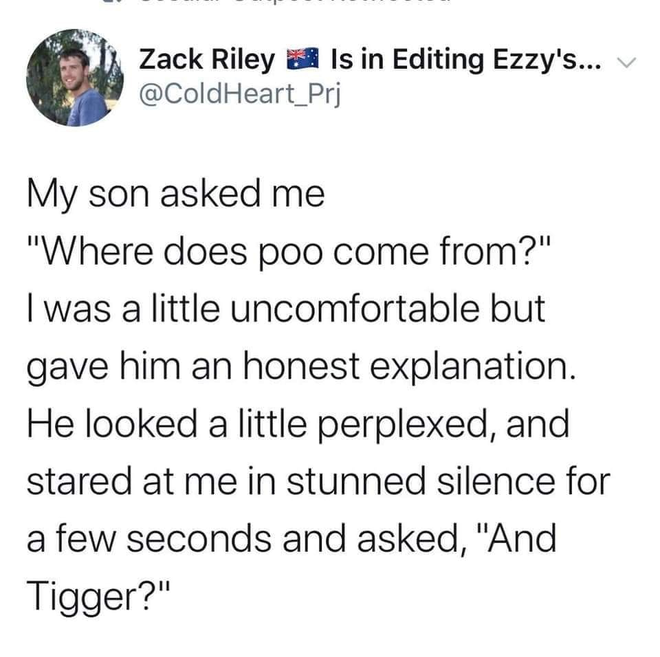 my son asked, where does poo come from?, i was a little uncomfortable but gave him an honest explanation, he looked a little perplexed and stared at me in stunned silence for a few seconds and then asked, and tigger?