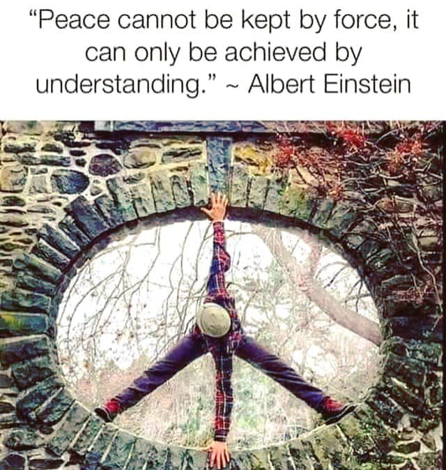 peace cannot be kept by force, it can only be achieved by understanding, albert einstein