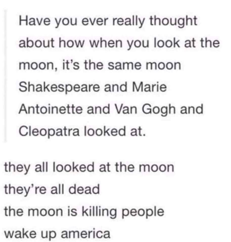 have you ever really thought about how when you look at the moon, it's the same moon shakespeare and marie antoinette and van gogh and cleopatra looked at, they all looked at the moon, they're all dead, the moon is killing people