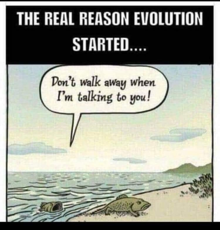 the real reason evolution started, don't walk away when i am talking to you!