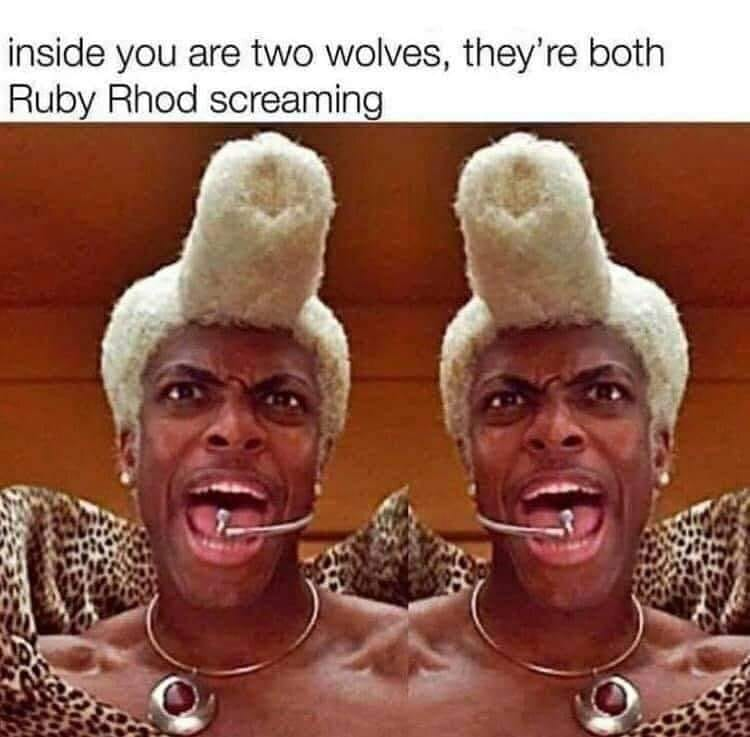 inside you are two wolves, they're both ruby rhod screaming