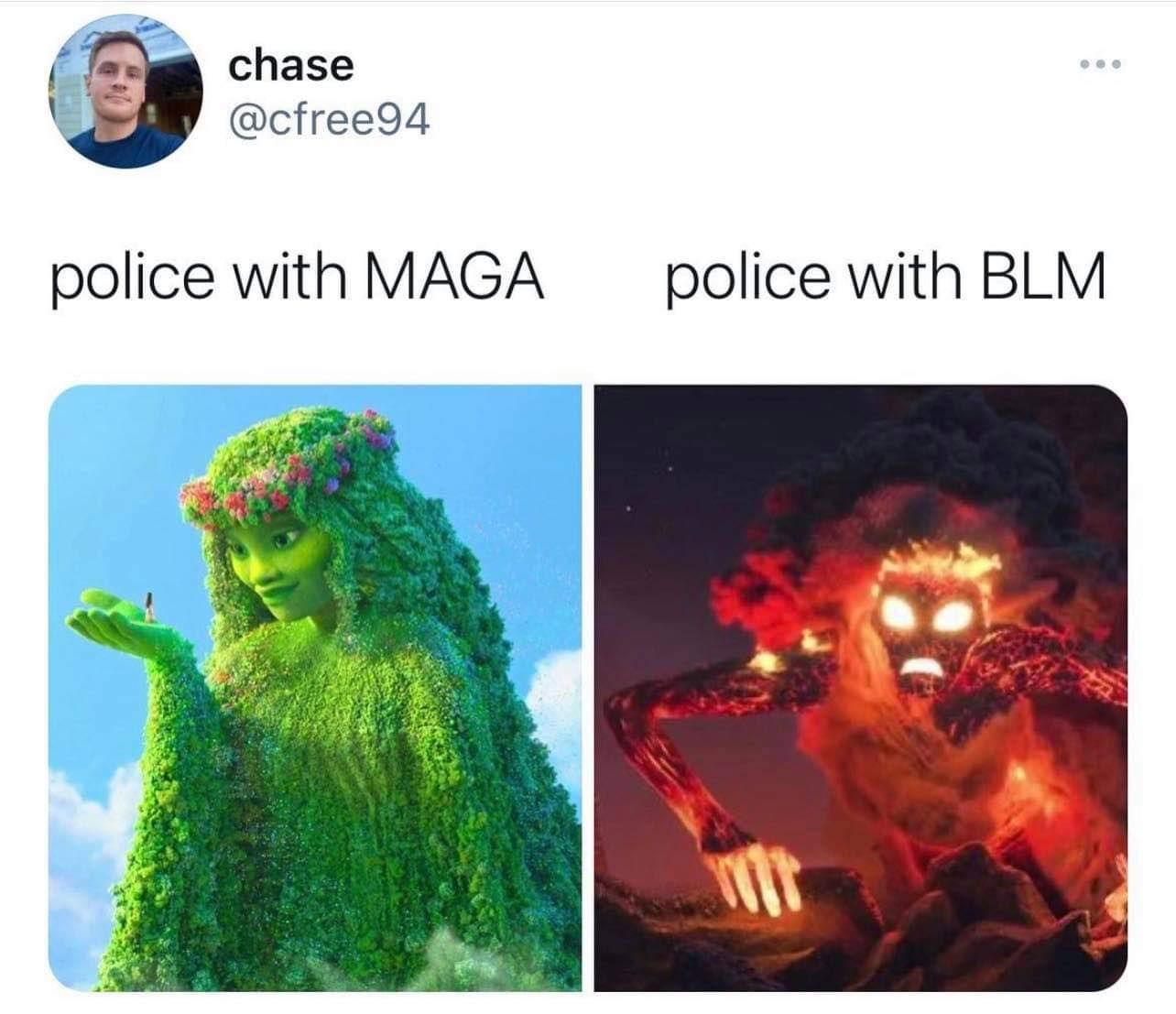 police with maga, police with blm, moana, te fiti