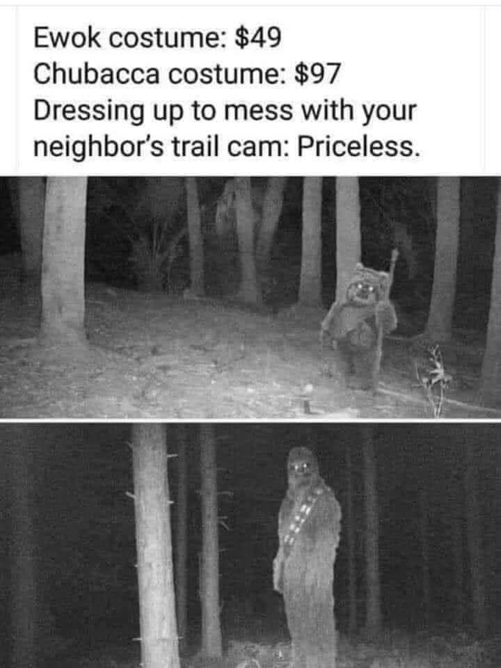 ewok costume, 49$, chewbacca costume, 97$, dressing up to mess with your neighbours trail cam, priceless