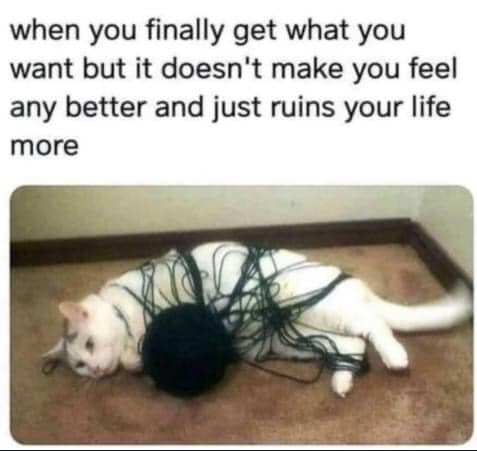 when you finally get what you want but it doesn't make you feel any better and just ruins your life more, cat caught in yarn