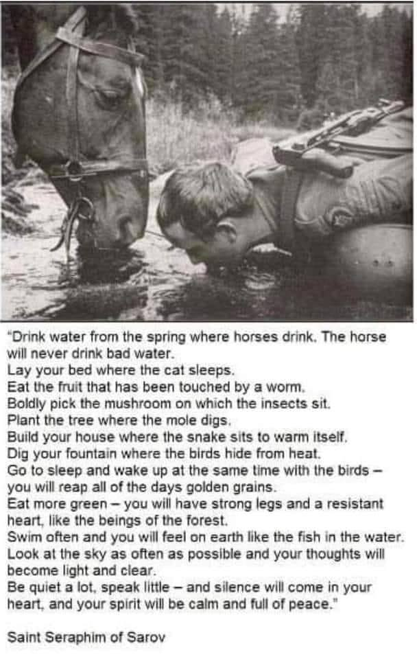 drink water from the spring where horses drink, the horse will never drink bad water, lay your bed where the cat sleeps, eat the fruit that has been touched by a worm